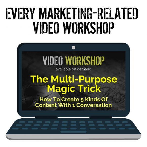 The Turtle Tribe - Marketing Workshops